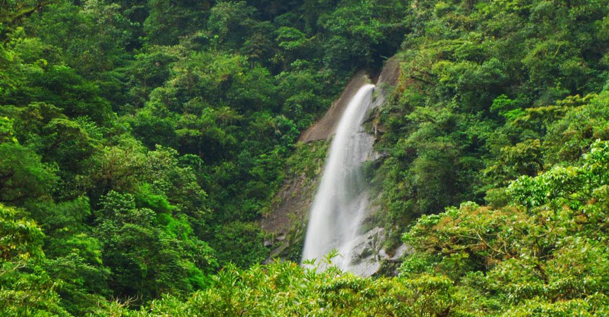 Parque nacional de Tapanti