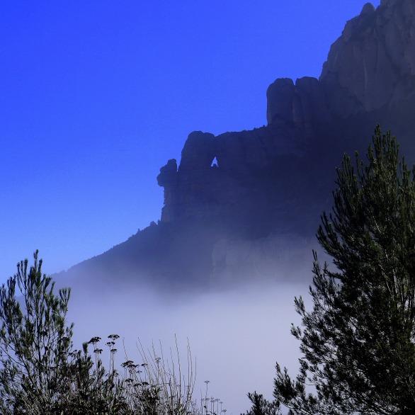 fog-1165871_1920
